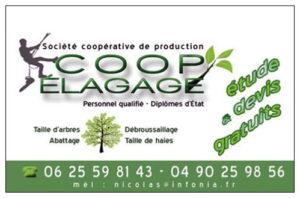 Logo + carte de visite société coopérative