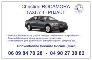 Carte de visite artisan taxi